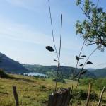Chemin des pierres/Art trail